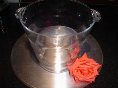 Acrylic ice bucket - £1